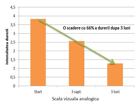 Grafic cercetare 2005