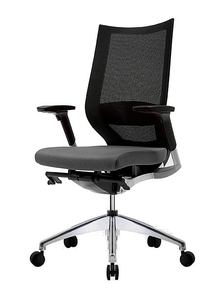 scaun-fortis