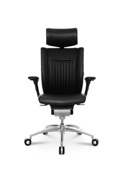 GreenForest - mobilier de birou wagner_titan_ltds-457x600 Executive Swivel Chairs