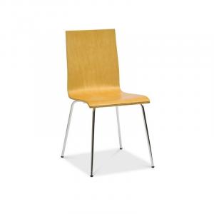 scaun gkt