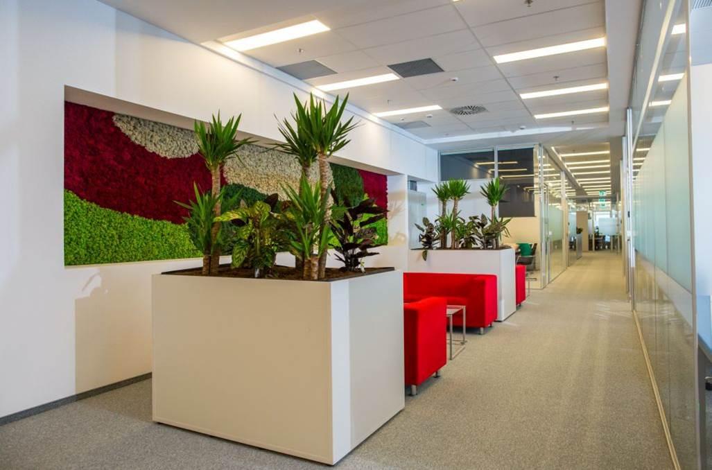 GreenForest - mobilier de birou ness2 Projects