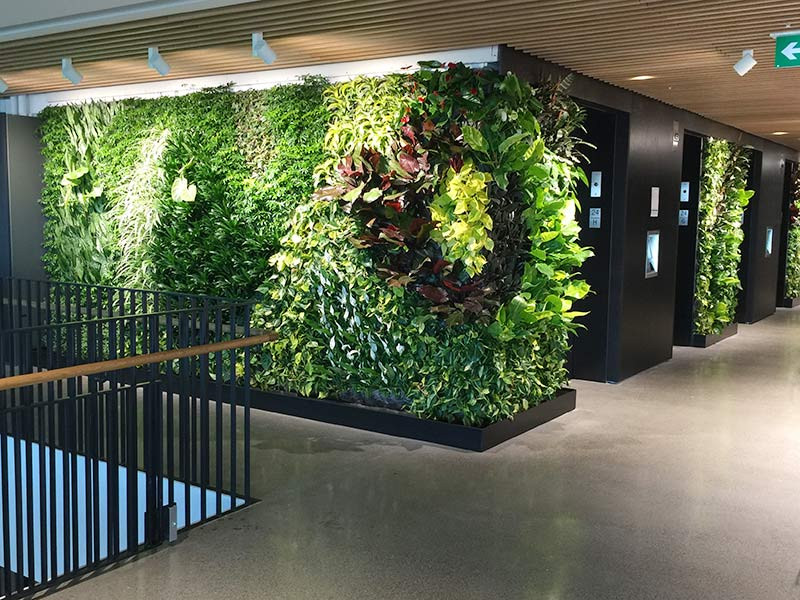 GreenForest - mobilier de birou McCarthy-Vancouver-Offices-4akustik-38 Projects